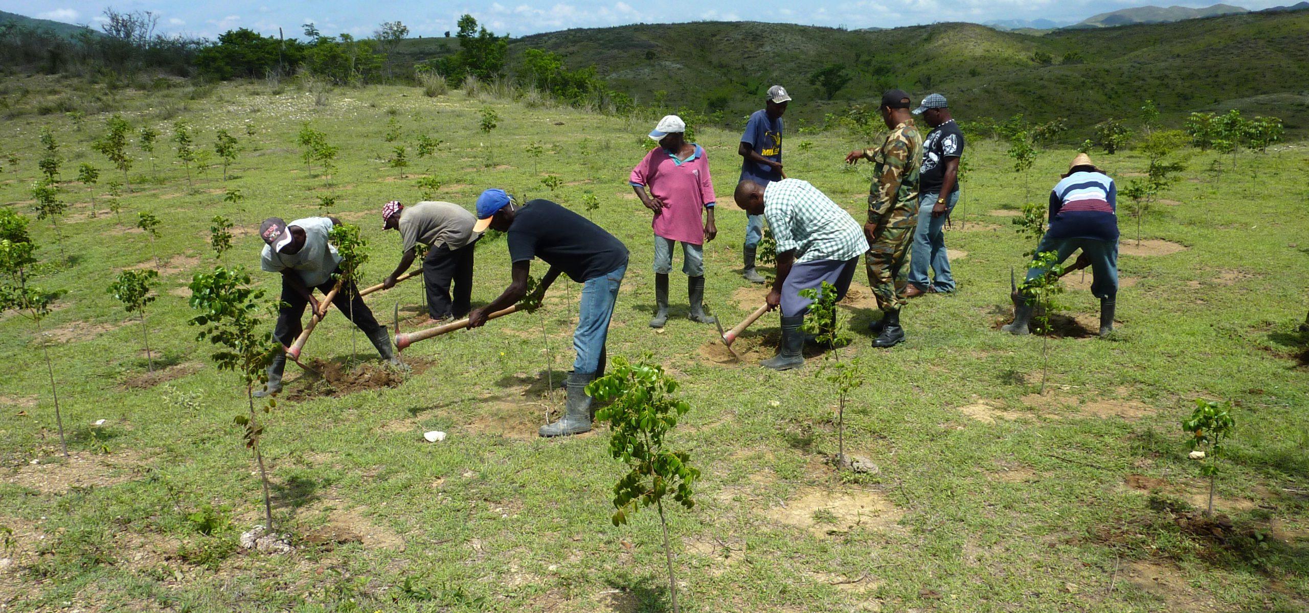 Environmental Preparedness Planning